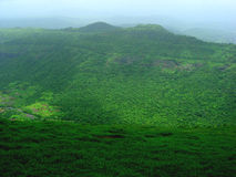 Green forested landscape. Scenic view of green forest on mountainous landscape Royalty Free Stock Photo
