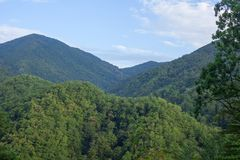Green forested mountains. Some forested mountains of Caucasus in the summer Royalty Free Stock Images