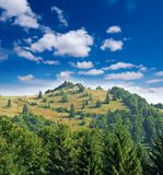 Green foresty mountain Royalty Free Stock Images