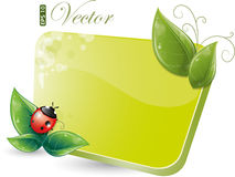 Green form with leaves and ladybug Royalty Free Stock Images