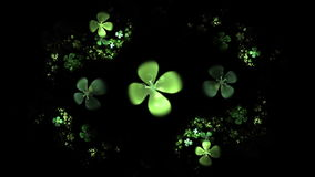Green Four Leaf Clover On Black Animation Stock Photography