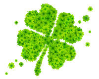 Green four-leaf clover made from little clovers Royalty Free Stock Image