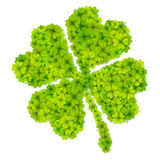 Green four-leaf clover shape filled with little clovers isolated on white background Stock Images