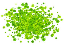 Green four-leaf clovers cloud splash isolated on white background Royalty Free Stock Photography
