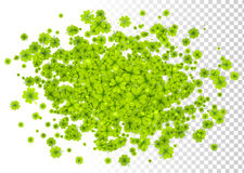 Green four-leaf clovers cloud splash isolated on white and transparent grid background Royalty Free Stock Photography