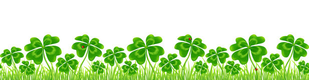 Green four-leaf clovers field, Saint Patrick`s Day vector seamless border. Isolated on white background Royalty Free Stock Images
