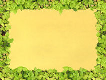 Green frame paper royalty free stock image
