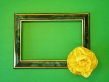 Green frame and ribbon Stock Images