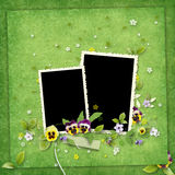 Green frame for two photos Stock Photography