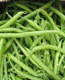 Green French beans Stock Image