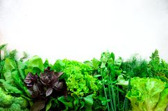 Green fresh aromatic herbs - thyme, basil, parsley on gray background. Food frame, border design. Copyspace. Top view.  Royalty Free Stock Image