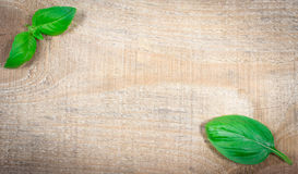 Green fresh basil on wooden background. Royalty Free Stock Image