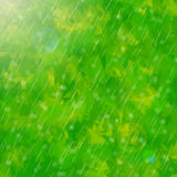 Green rain ligth blur background Stock Photos