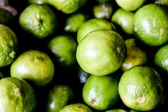 green fresh Brazilian lemons royalty free stock photos