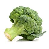 Green fresh broccoli stock photography
