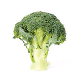 Green fresh brocoli. Isolated on white royalty free stock photography