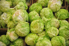 Green fresh cabbage Royalty Free Stock Images