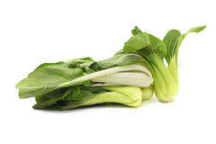 Green Fresh Chinese Cabbage or Bok Choy Stock Photo