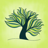 Green fresh colorful tree with branches and leaves Royalty Free Stock Photography