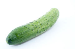 Green fresh cucumber Royalty Free Stock Images