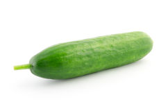 Green fresh cucumber isolated on white Royalty Free Stock Images