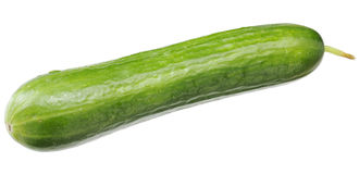 A green fresh cucumber with a sticking out sprig Royalty Free Stock Photography