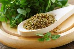 Green fresh and dry oregano Royalty Free Stock Image