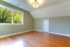 Green fresh empty room with view of trees. Stock Photography