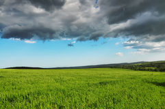 Green fresh field and Blue Dramatic Sky Stock Photography