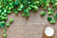 Green Fresh Hops with Wheat and Beer as copy space frame text area on sackcloth background. Flat lay. Still life. Top view Stock Photos