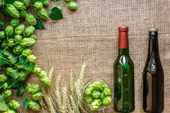Green Fresh Hops with Wheat and two bottles of beer as copy space frame text area on sackcloth background. Flat lay. Still life. Top view Royalty Free Stock Photo