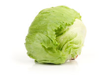 Green fresh iceberg Royalty Free Stock Photo