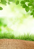 Green Fresh Leaves and Sack. With greenery and nature in the background and in the foreground the visual mesh Stock Image