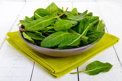 Green fresh leaves of sorrel spinach in a ceramic bowl in water drops Royalty Free Stock Images