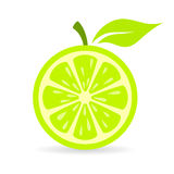 Green fresh lime vector icon Royalty Free Stock Image