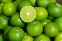 Green fresh green limes background royalty free stock photo