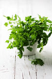 Green fresh parsley on the wooden table Stock Images