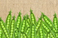 Green fresh peas over burlap background Royalty Free Stock Images