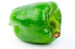 Green fresh pepper Stock Photos