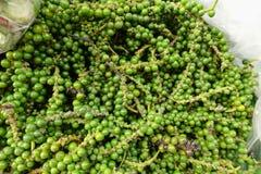 Green fresh pepper Royalty Free Stock Photo