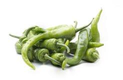 Organic green pepper Royalty Free Stock Photo