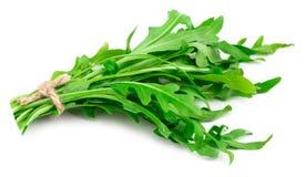 Green fresh rucola leaves isolated on white background. Rocket s. Alad or arugula royalty free stock image