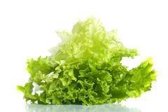 Green fresh salad Royalty Free Stock Photography
