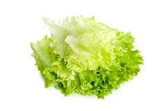 Green fresh salad. Image isolated on a white background Royalty Free Stock Photography