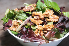 Green fresh salad with hazelnuts healthy diet Royalty Free Stock Photo