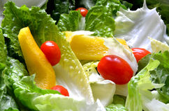 Green fresh salad leaves, tomato and paprika. Detail Stock Images