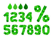Green Fresh Spring Leaves Ecology Font, Number and percent Royalty Free Stock Images