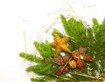 Green fresh spruce branch with decoration Stock Image