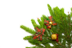 Green fresh spruce branch with decoration Stock Photo
