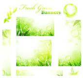 Green fresh sunny banners Stock Photos
